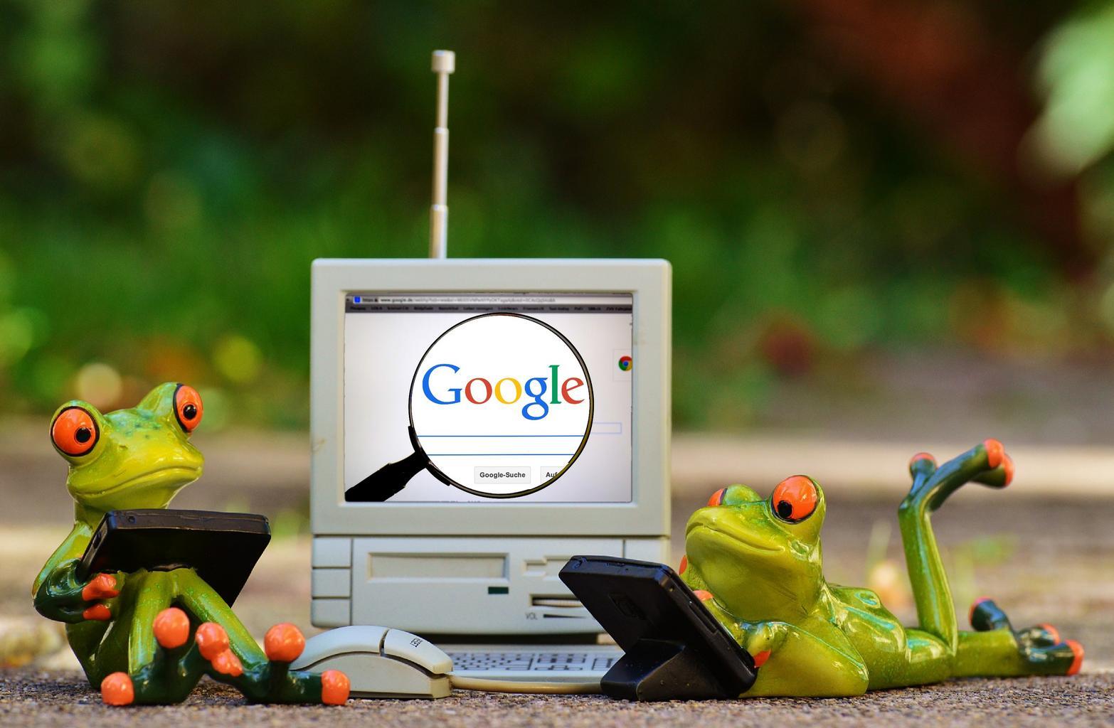 žaby, google