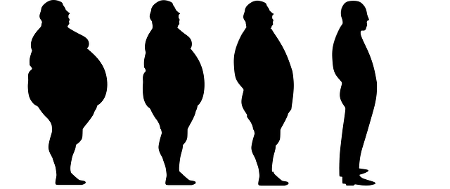 fáze hubnutí